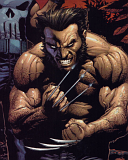 wolvie.png